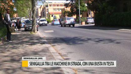Senigallia: tra le macchine in strada con una busta in testa – VIDEO