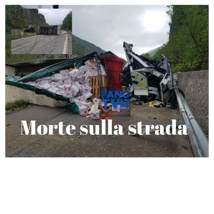Palermo, ciclista morto travolto da auto: 'pirata' si consegna