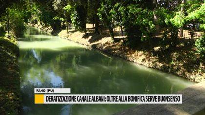 Deratizzazione canale Albani: Oltre alla bonifica serve buonsenso – Video