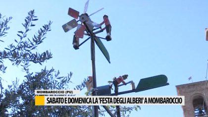 Sabato e domenica la Festa degli alberi a Mombaroccio – VIDEO