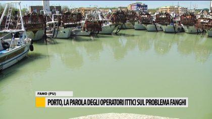 Porto, la parola degli operatori ittici sul problema dei fanghi – VIDEO