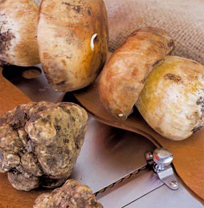 Arriva l'etichetta obbligatoria anche per tartufi e funghi