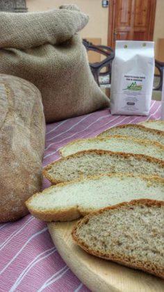 A Cantiano la 'Piazza del Gusto': si inizia con il premio gastronomico