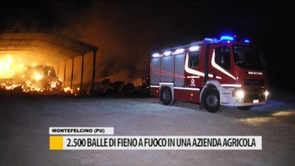 2.500 balle di fieno a fuoco in un azienda agricola