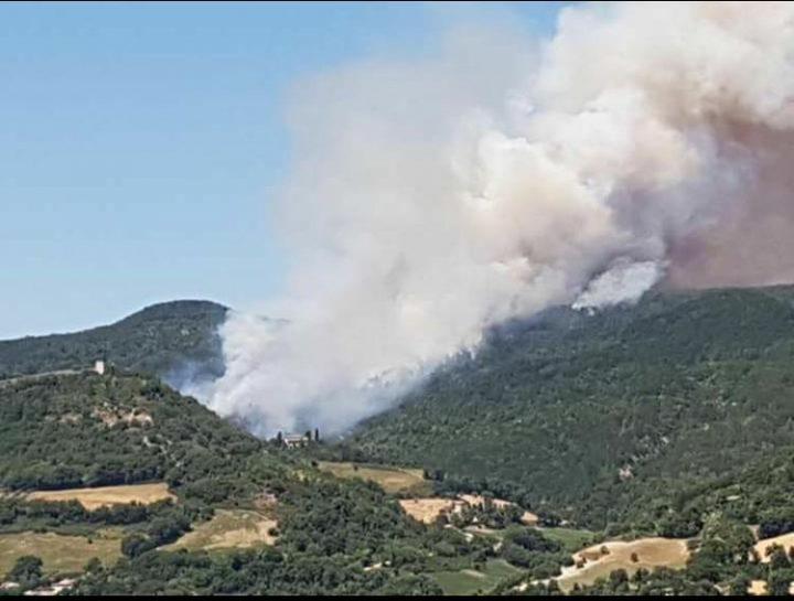 Boschi in fiamme, vigili del fuoco divisi tra Cesane, Pergola e Cagli