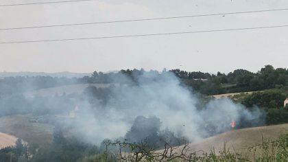 Sterpaglie a fuoco tra Fano e Pesaro (foto e video)