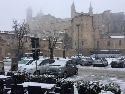 METEO NEVE: Nevica a Urbino e in tutto l'entroterra (VIDEO). Aggiornamenti dei Reporter