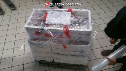 Sequestro di prodotto ittico nel porto di Ancona. Proseguono i controlli a tutela della filiera della pesca e della sicurezza alimentare da parte dei militari della Guardia Costiera