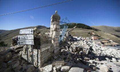 Terremoto: da Mise 30 milioni per il rilancio delle imprese marchigiane