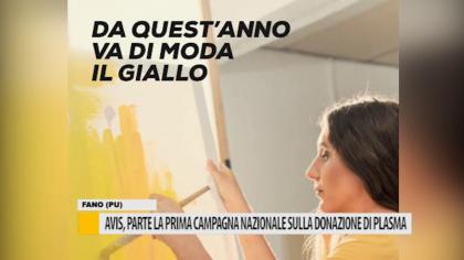 Avis, parte la prima campagna nazionale sulla donazione di plasma – VIDEO