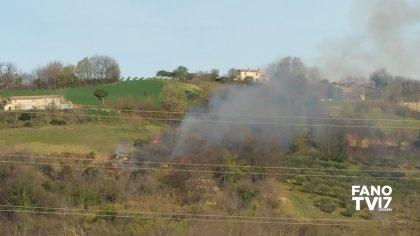 Fano, a fuoco 1000 metri quadri di vegetazione arbustiva. Intervento dei VVF – VIDEO