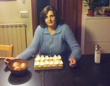 Il Barometro delle cipolle per il 2014. Inverno fino a marzo poi estate piena