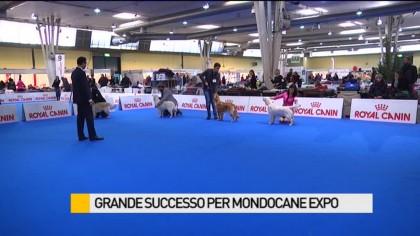 Grande successo per Mondocane Expo, l'esposizione internazionale canina – VIDEO