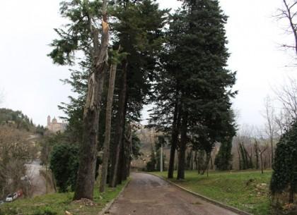 Il luogo dell'incidente a Urbino 3