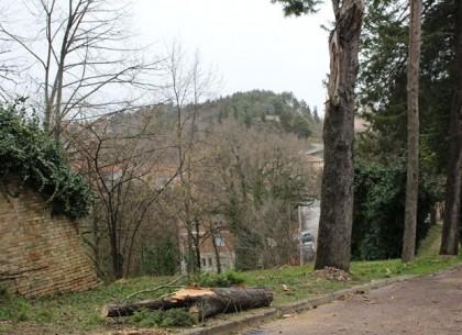 Il luogo dell'incidente a Urbino 5
