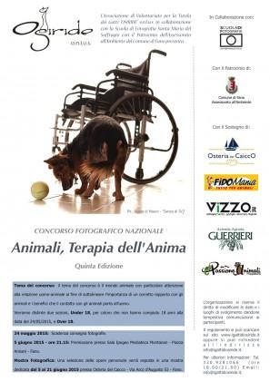 """""""Animali, terapia dell'anima"""", aperto il foto-concorso"""