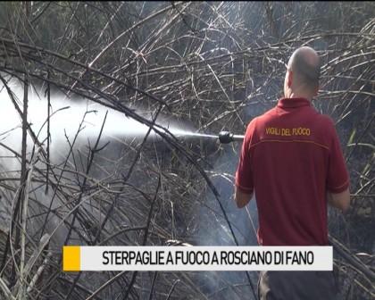 Sterpaglie a fuoco a Rosciano di Fano – VIDEO