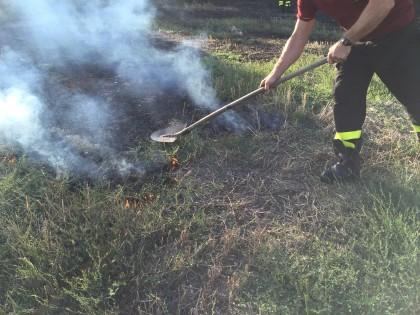 Incendio-sterpaglie-cannelle2015 (11)