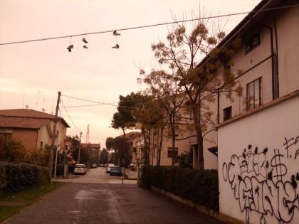 Il fenomeno delle scarpe volanti è arrivato anche a Fano