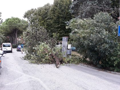 Maltempo, tromba d'aria tra Pesaro e Fano. Numerosi interventi dei Vigili del Fuoco – VIDEO