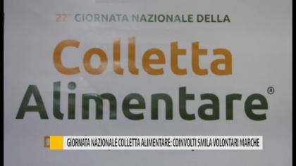Giornata Nazionale Colletta Alimentare: coinvolti 5mila volontari Marche – VIDEO