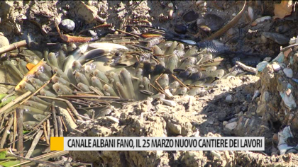 Canale Albani Fano, il 25 marzo nuovo cantiere dei lavori – VIDEO