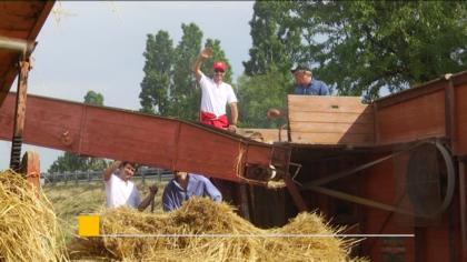 A Falcineto di Fano torna la 40ª Festa della Mietitura – VIDEO