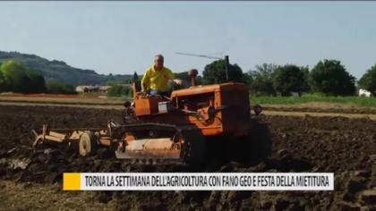 Torna la settimana dell'agricoltura con Fano Geo e Festa della Mietitura – VIDEO