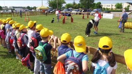 Fano Geo, il 18 maggio al Codma di Rosciano l'inaugurazione della FierAgricola