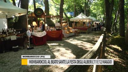 """Mombaroccio, al Beato Sante la """"Festa degli Alberi"""" l'11 e 12 maggio – VIDEO"""