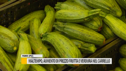 Maltempo, aumentato di prezzo frutta e verdura nel carrello – VIDEO