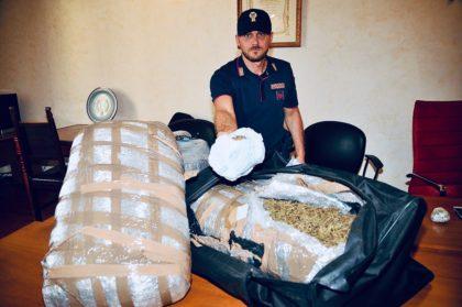 Sequestrata dalla polizia mezza tonnellata di marijuana: tre arresti – VIDEO