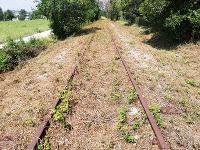 Pulizia ferrovia Fano-Urbino: Nuova Fano ringrazia il Prefetto