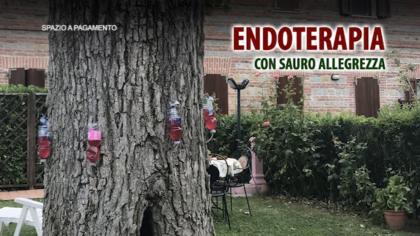 ENDOTERAPIA 2 con Sauro Allegrezza – Approfondimento