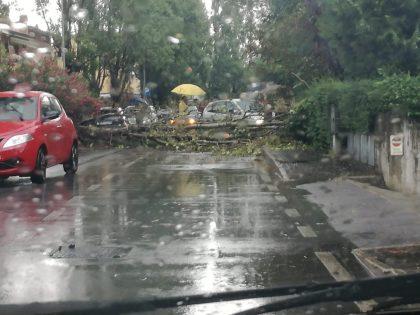 Maltempo, violenti temporali nelle Marche: ancora danni e strade allagate – FOTO e VIDEO