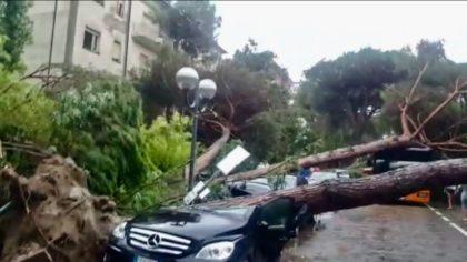 Maltempo, violenta tromba d'aria a Milano Marittima: strage di alberi – Guarda i VIDEO