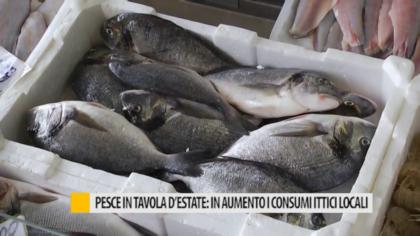 Pesce in tavolo d'estate: in aumento i consumi ittici locali – VIDEO