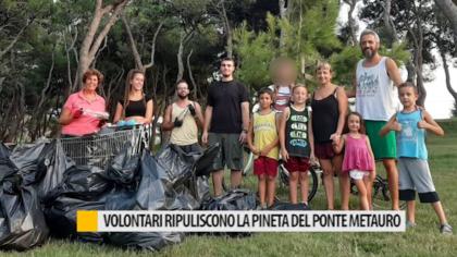 Volontari ripuliscono la pineta del ponte Metauro – VIDEO