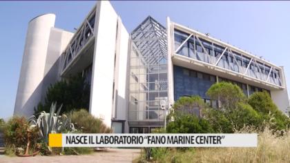 """Nasce il laboratorio """"Fano Marine Center"""" – VIDEO"""