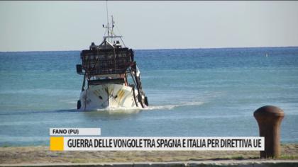 Guerra delle vongole tra Spagna e Italia per direttiva UE – VIDEO