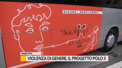 Violenza di genere, il progetto polo 3 – VIDEO